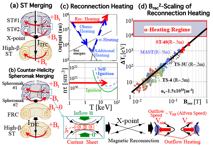 (a) Two merging ST plasmas to form a high-beta ST, (b) two merging spheromaks to form an FRC and its transformation to a high-beta ST and their X-point region (bottom), (c) temperature ($T$) dependence of the conventional fusion plasma heating composed of ohmic and additional heatings and that of the reconnection heating, (d) dependence of ion temperature increment $\Delta T_i$ on reconnecting magnetic field $B_{rec}$ of two merging STs and spheromaks under $n_e$~$1.5 \times 10^{19}m^{-3}$.