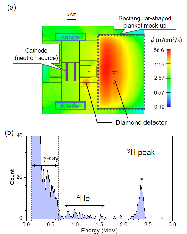 (a) Thermal neutron flux distribution in the blanket mock-up by the MCNP code and (b) the spectrum detected by the diamond detector after the irradiation test for 5h. The integration of 3H count yielded the 6Li(n,t)4He reaction rate of 4.05×10^-7 (/s.n.).